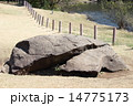 明治神宮 亀石 14775173