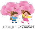 桜と子供 14788584
