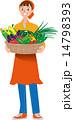 収穫 夏野菜 14798393