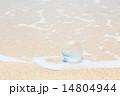 波打ち際の地球儀 14804944