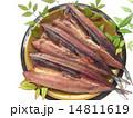 さんま 秋刀魚 ひらきの写真 14811619