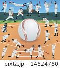野球 14824780