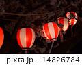 桜と祭 14826784
