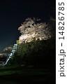 城跡の桜 14826785