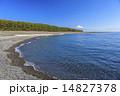 三保の松原からの駿河湾と富士山 14827378