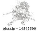 甲冑 戦国武将 武田信玄のイラスト 14842699