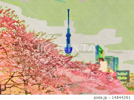 猿江恩賜公園の桜とスカイツリー 14844261