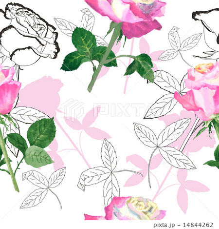 Seamless pattern with roses-06 14844262