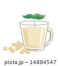 豆乳 14884547