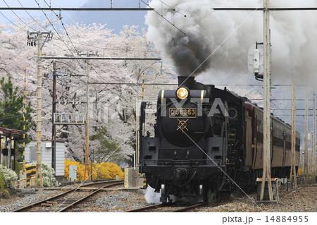 春の秩父鉄道SL 14884955
