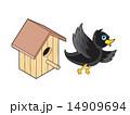 営巣 むくどり カラムクドリのイラスト 14909694