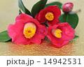 ブーケ 和紙 花の写真 14942531