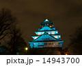 天守閣 大阪城 ブルーライトの写真 14943700