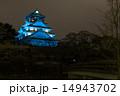 天守閣 大阪城 ブルーライトの写真 14943702