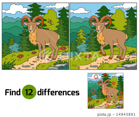 Find differences (Urial, wild sheep)のイラスト素材 [14943891] - PIXTA