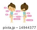 脂肪などの部位 14944377