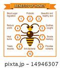はちみつ 蜂蜜 蜜のイラスト 14946307