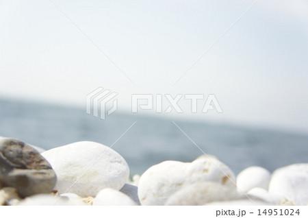 海と白い石 14951024