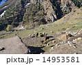山岳地帯 ナンガパルバット近郊 風景の写真 14953581