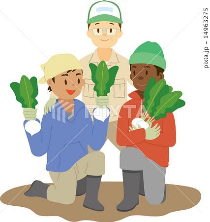 農業に従事する外国人技能実習生 14963275