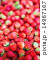 たくさんのイチゴ 14967167