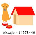 犬と犬小屋 14973449