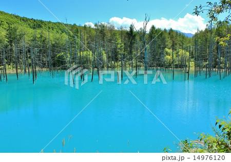 爽やかな秋空とブルーの青い池 14976120