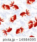 泳ぐ金魚, 14984095