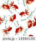 泳ぐ金魚, 14984100