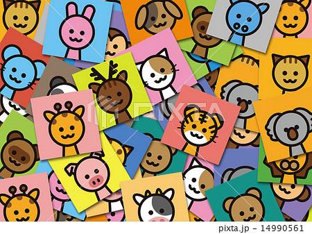 動物の背景 14990561