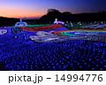 東京ドイツ村 ドイツ村イルミネーション 夕景の写真 14994776