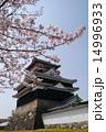 清洲城と桜 北側から 14996933