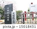 長岡京跡と桜(京都府向日市) 15018431