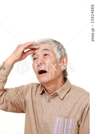 痴呆症にかかってしまった高齢者 15024669