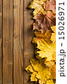 autumn leaves over wooden background 15026971