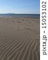 風紋 ビーチ 砂浜の写真 15053102