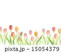背景素材 花 チューリップのイラスト 15054379