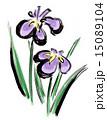 挿絵 菖蒲 花のイラスト 15089104