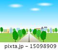 街路樹 並木道 道路のイラスト 15098909