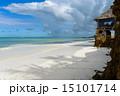 Zanzibar beach 15101714