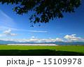田園 スーパーこまち 秋田新幹線の写真 15109978