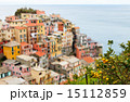 Manarola village in Cinque Terre 15112859