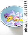 三色スミレ 浮かべる ボウルの写真 15114388