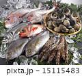 魚介類 鮮魚 集合の写真 15115483