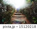 光への階段 15120218