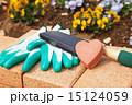 ガーデニング 園芸用品 園芸の写真 15124059