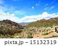 アンデス 高地 ボリビアの写真 15132319