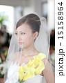 結婚式の花嫁 15158964