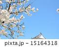 三階櫓 白石城 枡岡城の写真 15164318