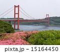 長崎県 平戸大橋 15164450